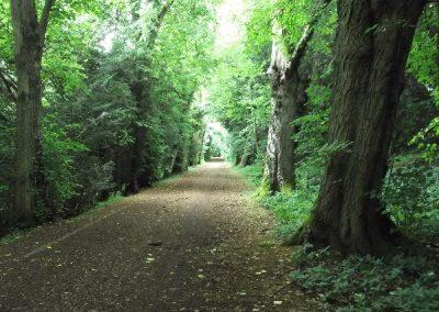 Charles Bridgeman Tring Park