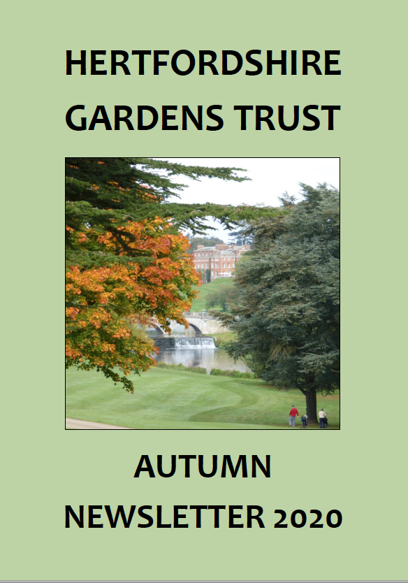 Autumn Newsletter 2020 cover page
